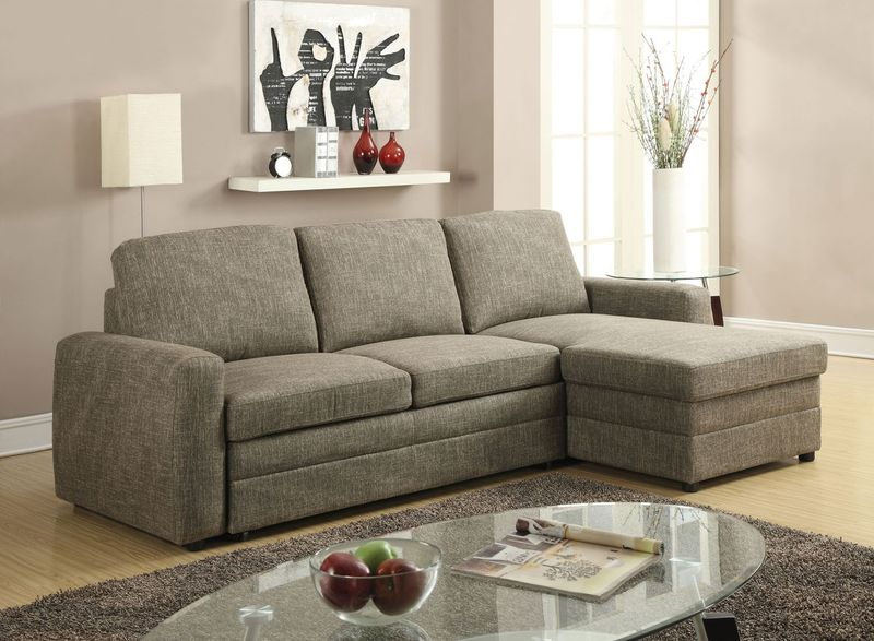 Derwyn Sectional with Pull-Out Bed