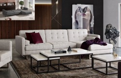 Opus Convertible Sectional Sofa in Barley